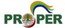 Logo Proper